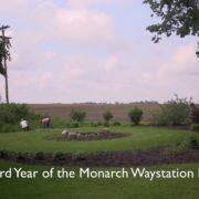 Year 3 - Mayfield Monarch Waystation